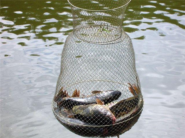 садки для рыбы на рыбалке