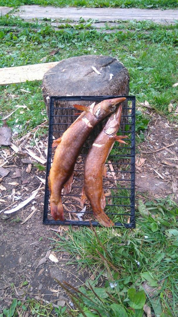 платная рыбалка семидесятное